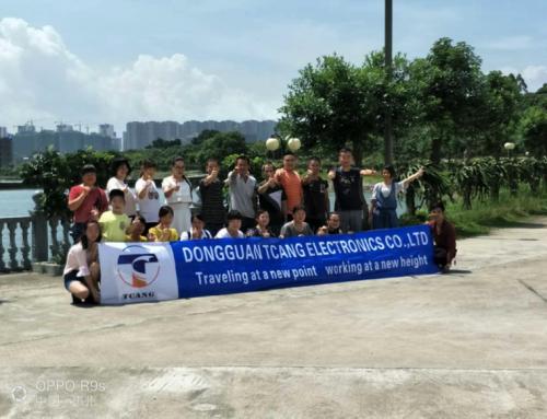 Outdoor Team Activity in Huizhou, Guangdong